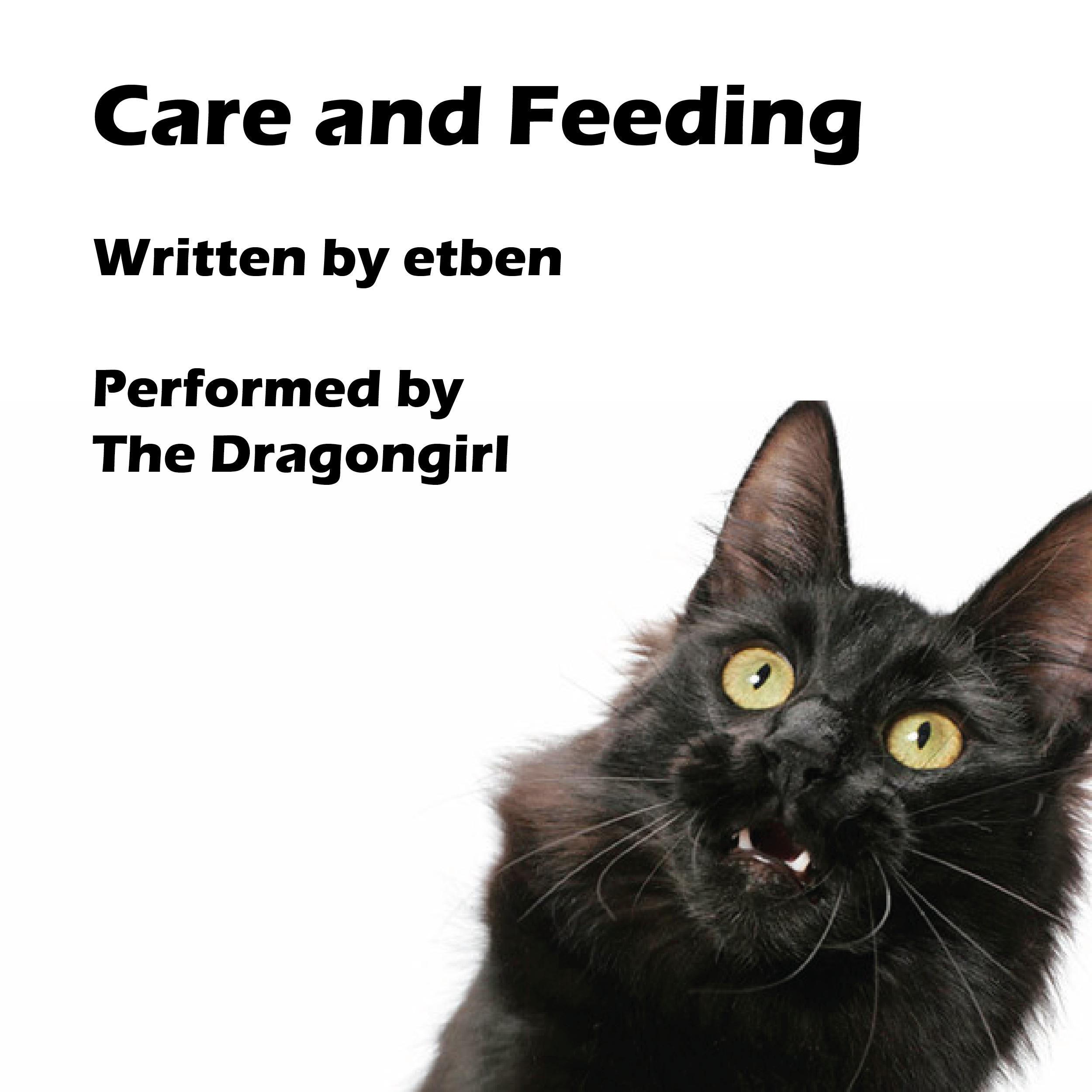Care and Feeding Album Cover