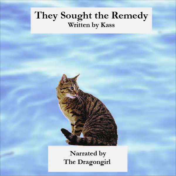 They Sought the Remedy Album Cover